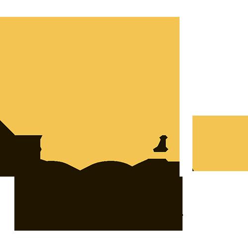 Обзора букмекера MELbet